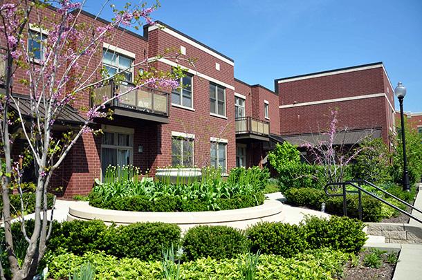 University Village Low Rises
